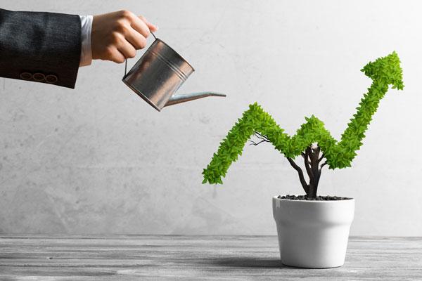 Luminas Strategy Organic Growth